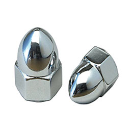 Stainless Steel Acorn Nuts