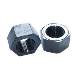ASTM A194 AISI Stainless Steel Heavy Hex Nuts