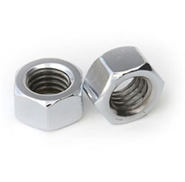 Stainless Steel Nuts